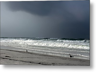 Metal Print featuring the photograph Stormy by Debra Forand