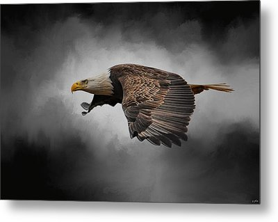 Stormy Sky Flight Metal Print by Jai Johnson
