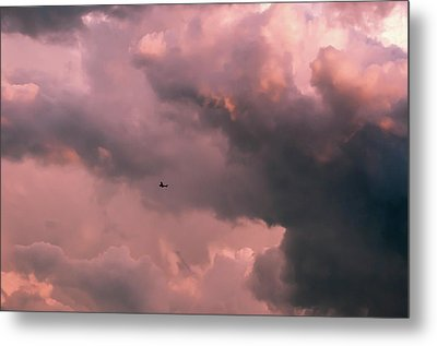 Stormy Weather Metal Print by Carolyn Dalessandro