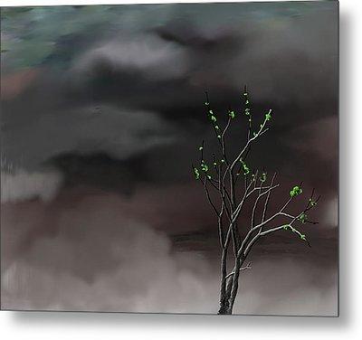 Stormy Weather Metal Print by David Lane