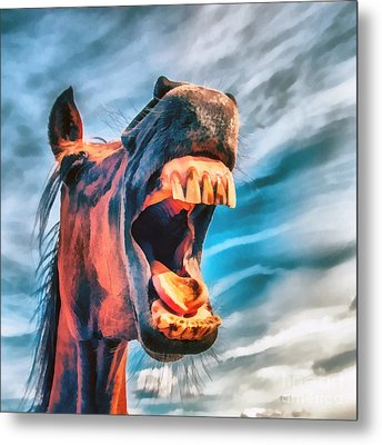 Straight From The Horses Mouth Metal Print by Edward Fielding