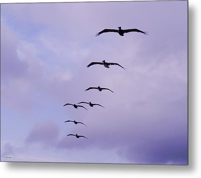 Straighten Up Fly Right Metal Print