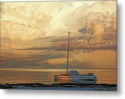 Stranded Metal Print by HH Photography of Florida