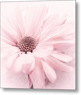 Strawberry Ice Metal Print