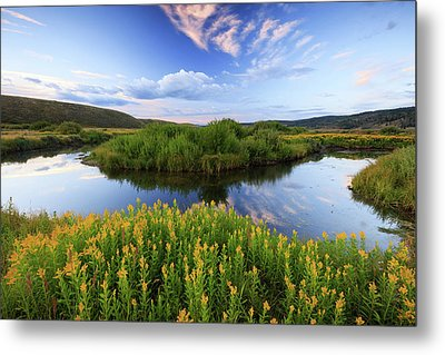 Metal Print featuring the photograph Strawberry River With Summer Flowers. by Johnny Adolphson