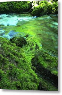 Stream Above Whitehorse Falls Metal Print