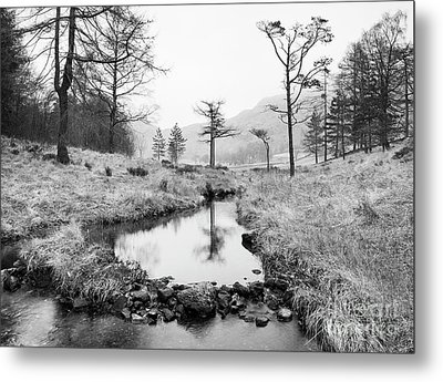 Stream At Blea Tarn Metal Print by Tony Higginson