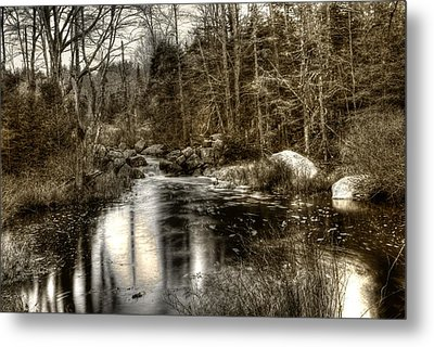 Metal Print featuring the photograph Stream I by Greg DeBeck
