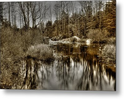 Metal Print featuring the photograph Stream II by Greg DeBeck