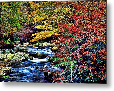 Stream In Autumn Metal Print by Kevin  Sherf
