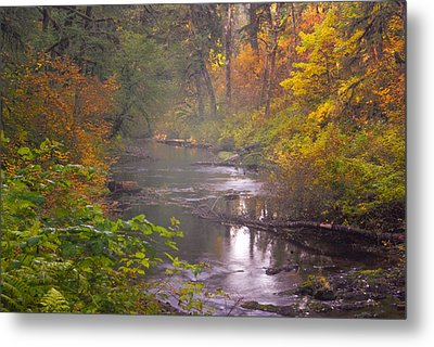 Stream Of The Fall Metal Print by Dale Stillman