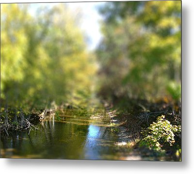 Metal Print featuring the photograph Stream Reflections by EricaMaxine  Price
