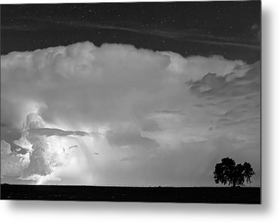 Striking Distance In Black And White Metal Print