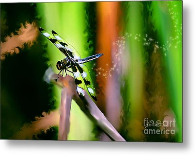 Striped Dragonfly Metal Print