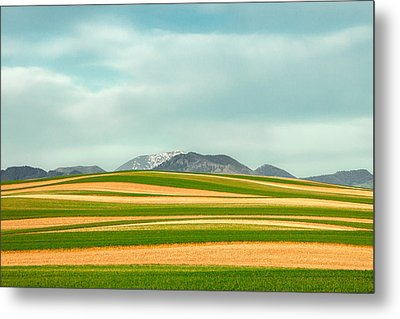 Stripes Of Crops Metal Print by Todd Klassy