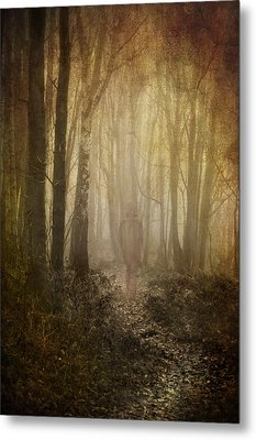 Stroll Through My Mind Metal Print by Meirion Matthias