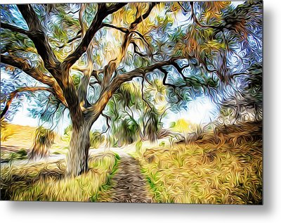 Strolling Down The Path Metal Print