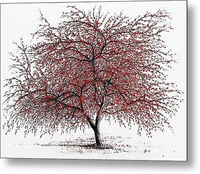 Study Of A Choke Cherry Tree Metal Print