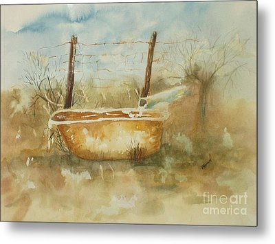 Study Of A Watering Tub Metal Print by Vicki  Housel