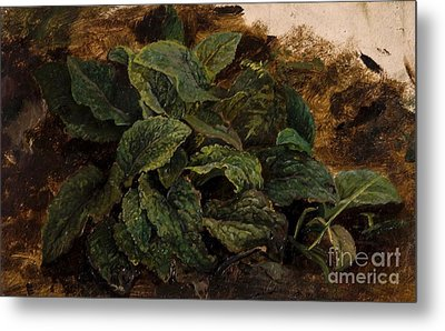 Study Of Leaves Metal Print by MotionAge Designs