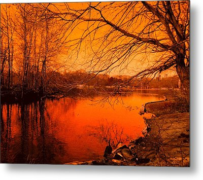 Studying The Sunset Metal Print