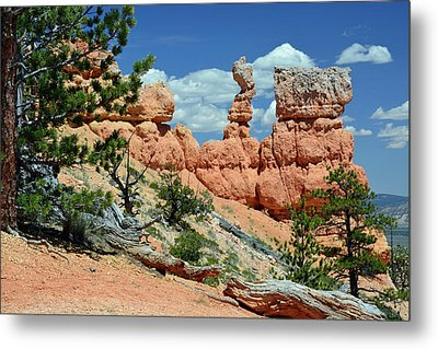 Metal Print featuring the photograph Stunning Bryce Canyon National Park Backcountry by Bruce Gourley