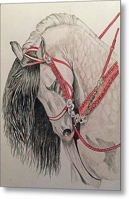 Stunning Spanish Horse Metal Print