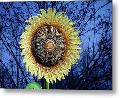 Stylized Sunflower Metal Print by Tom Mc Nemar