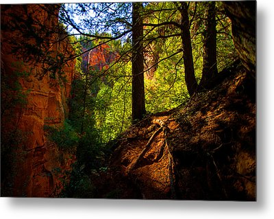Subway Forest Metal Print by Chad Dutson