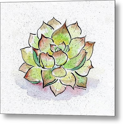 Succulent Metal Print by Diane Thornton