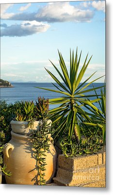 Succulents By The Sea Metal Print