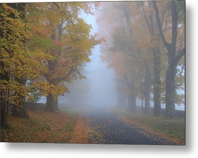 Sugar Maples On A Misty Country Road Metal Print by John Burk
