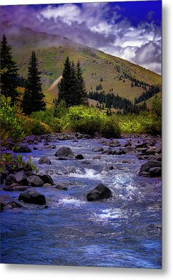 Metal Print featuring the photograph Summer At The Animas River by Ellen Heaverlo