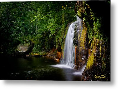Metal Print featuring the photograph Summer At Wolf Creek Falls by Rikk Flohr