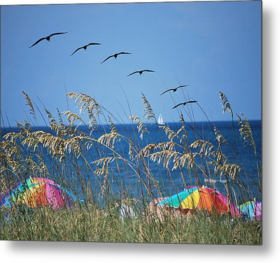 Summer Breeze Metal Print by Adele Moscaritolo