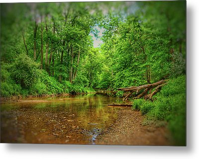 Summer Breeze II Metal Print