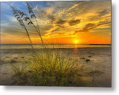Summer Breezes Metal Print