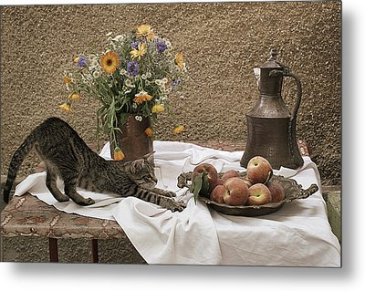 Summer Composition With Cat Metal Print by Floriana Barbu