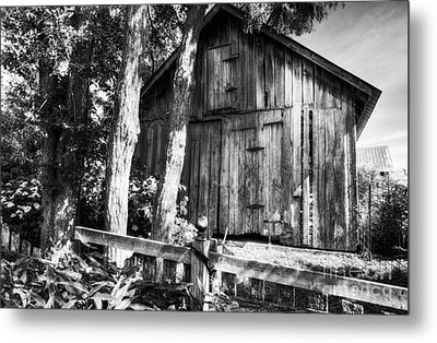 Summer Country Barn Bw Metal Print by Mel Steinhauer