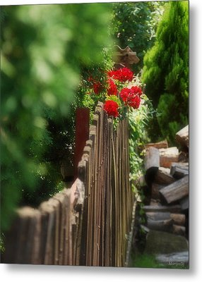 Summer Day... Metal Print