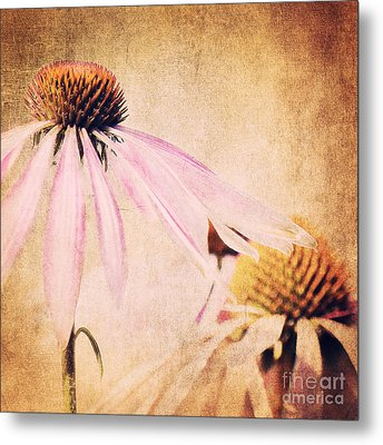 Summer Feeling Metal Print by Angela Doelling AD DESIGN Photo and PhotoArt