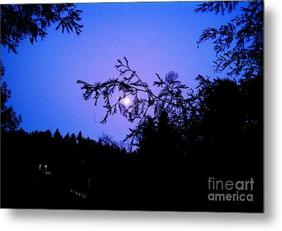 Summer Full Moon Metal Print