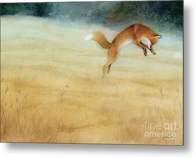 Summer Gold Fox Metal Print