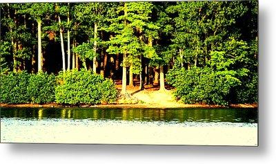 Summer Lake Metal Print by Aron Chervin