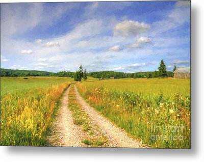 Summer Meadows Metal Print by Veikko Suikkanen