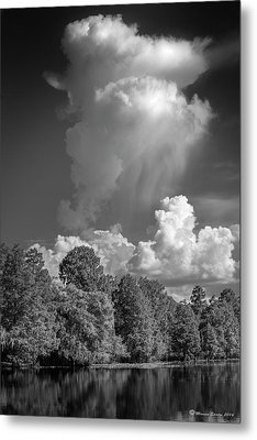 Summer Pop Up Metal Print by Marvin Spates