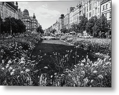 Metal Print featuring the photograph Summer Prague. Black And White by Jenny Rainbow