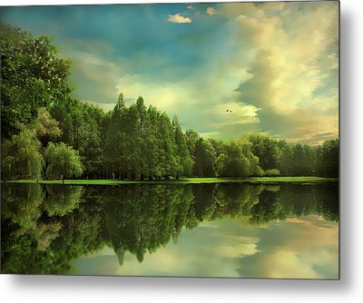 Summer Reflections Metal Print by Jessica Jenney