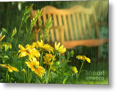 Summer Showers Metal Print by Sandra Cunningham