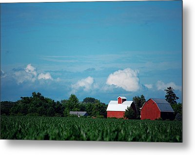 Summer Sky Summer Farm Metal Print by Jame Hayes